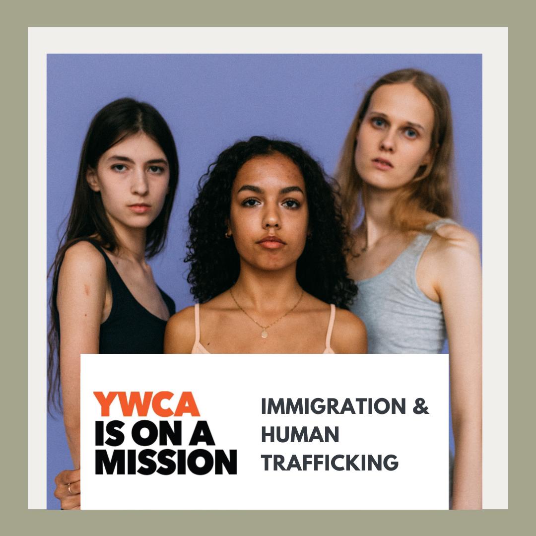 Immigrant status in the us